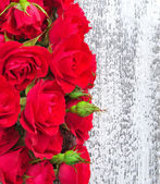 Red roses on wooden background — Stock Photo