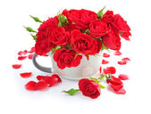Bouquet of red roses on white background — Stockfoto
