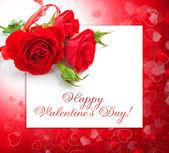 Son rosas rojas sobre un fondo de una tarjeta de felicitación — Foto de Stock