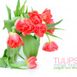 Bouquet of tulips isolated on white — Stock Photo