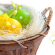 Easter eggs are in a trug on a white background — Stock Photo