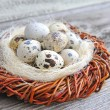 Quail eggs in nest on old wooden background — Stockfoto #22085763