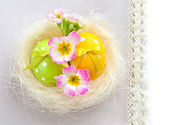 Colorful easter eggs - easter composition — Stock Photo