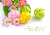 Colorful easter eggs and beautiful primula flowers (easter composition) — Stockfoto