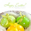 Easter eggs are in a nest on a white background — Stock Photo #22504481