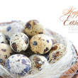 Quail eggs in a basket on a white background — Stock Photo