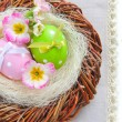 Colorful easter eggs - easter composition (with easy removable text) — Stock fotografie