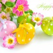 Colorful easter eggs and beautiful primula flowers (easter composition) — Stock Photo
