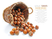 Filberts in the basket isolated on white background — Stock Photo