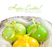 Easter eggs are in a nest on a white background — Stock Photo