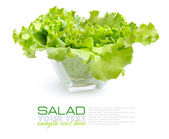 Fresh green salad in a glass dish on white background — Stock Photo