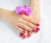 Beautiful hands with manicure and purple orchid flower — Foto de Stock