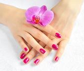 Krásné ruce s manikúrou a purpurová orchidej květina — Stock fotografie