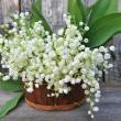 Basket with lilies of the valley (Convallaria majalis) — Stock Photo #26141609