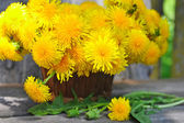 Bouquet of dandelions — Stock Photo