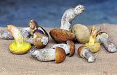 Fresh forest mushrooms on sacking — Stock Photo