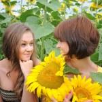 Young beautiful women in a sunflower field — Stock Photo