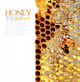 Sweet honeycomb of wild bees. Easy removable sample text — Stock Photo