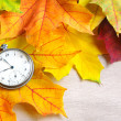 An old clock is on autumn maple leaves — Stock Photo #34453031