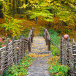 Bridge in bright autumn forest. Natural composition — Stock Photo