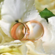 Wedding gold wedding rings are on the petals of flowers — Stock Photo