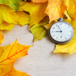 An old clock is on autumn maple leaves — Stock Photo