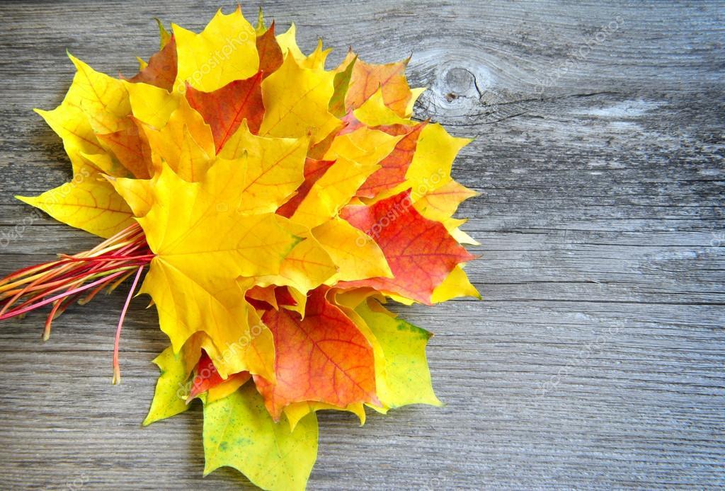 bouquet de feuilles d 39 automne sur fond en bois ancienne photographie nataliiamelnyc 34716927. Black Bedroom Furniture Sets. Home Design Ideas