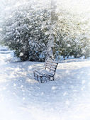 Bench in the park covered with snow — Stock Photo