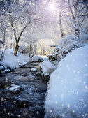 Beautiful winter landscape with the river in forest — Photo