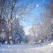 Beautiful winter landscape — Zdjęcie stockowe