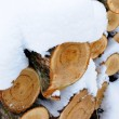 Stock Photo: Snow covered woodpile close