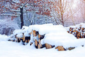 Winter landscape with firewoods covered snow — Stock Photo
