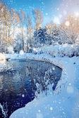 Vackert vinterlandskap med floden — Stockfoto