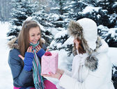 Young beautiful girls in winter with a gift — Stock Photo