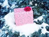 Gift on pine tree covered with snow — Stock Photo