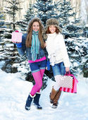 Beautiful happy girls with shopping bags in a winter park — ストック写真