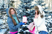 Beautiful happy girls with shopping bags in a winter park — Stockfoto