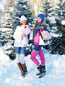 Beautiful happy girls with shopping bags in a winter park — Stock Photo