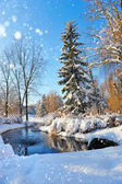 Winter landscape with the river in frosty day — Foto Stock