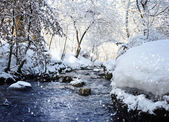 Winter landscape with the river in frosty sunny day — 图库照片