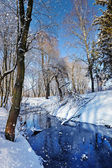 Winter landscape with the river in frosty sunny day — ストック写真