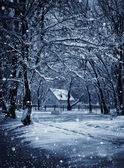 Hut in winter forest in the frosty moonlight night — Stockfoto