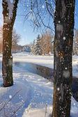 Zimowy pejzaż z rzeką w mroźny dzień — Zdjęcie stockowe