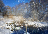 Beautiful winter landscap — Stock Photo