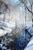 Beautiful winter landscape with the river — Stock Photo