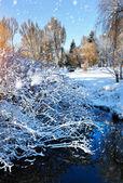 Paisaje de invierno hermosa con el río — Foto de Stock