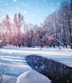 Winterlandschap in ijzig dag — Stockfoto