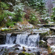 Stock Photo: Small stream in mountains winter forest