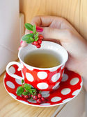 Cowberry (Vaccinium vitis-idaea) tea in woman hands — Stock Photo