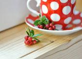 Cowberry (Vaccinium vitis-idaea) tea — Stock Photo